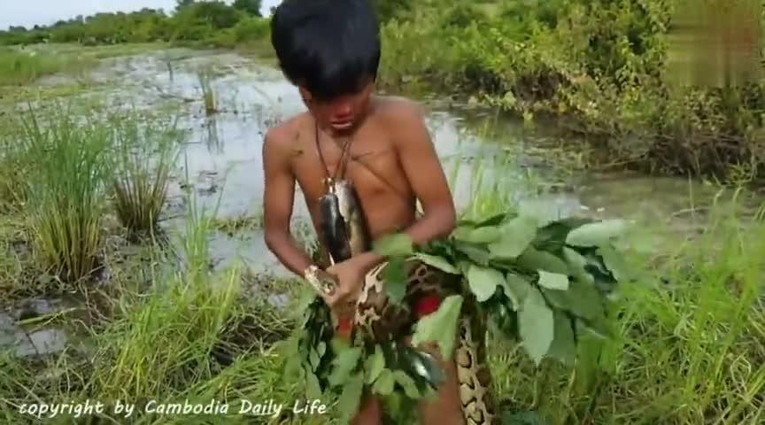 胆大小男孩沼泽遇到蟒蛇,不料被死死缠住看着揪心