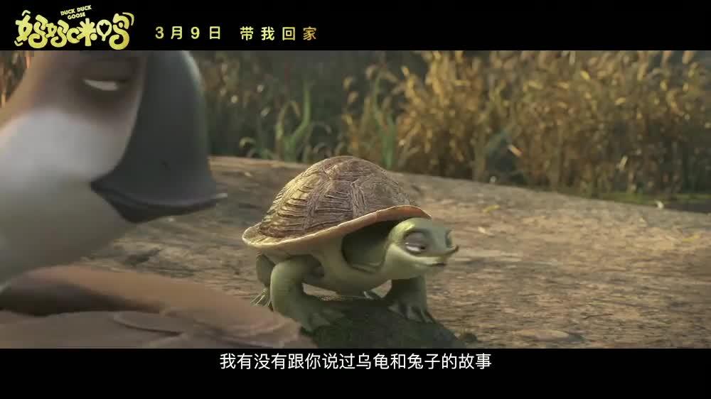 """《妈妈咪鸭》片段 乌龟与兔子因比赛相恋,生了一个""""大蛏子"""""""