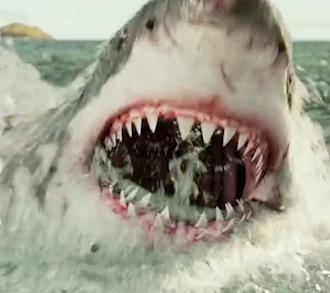 #惊悚看电影#速看灾难片《鲨滩》,鲨口求生系列难得佳作,看完肾上腺飙升
