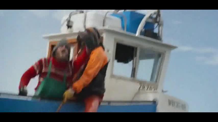 偷猎者刚猎完鲨鱼的鱼鳍,就被有智慧的鲨群以牙还牙