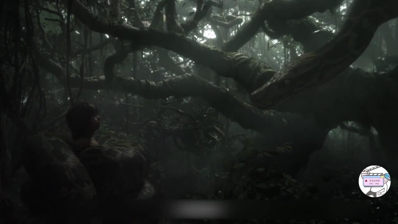 #经典看电影#男孩遭遇大蟒蛇袭击,关键时刻一只熊出现,成功把男孩救了