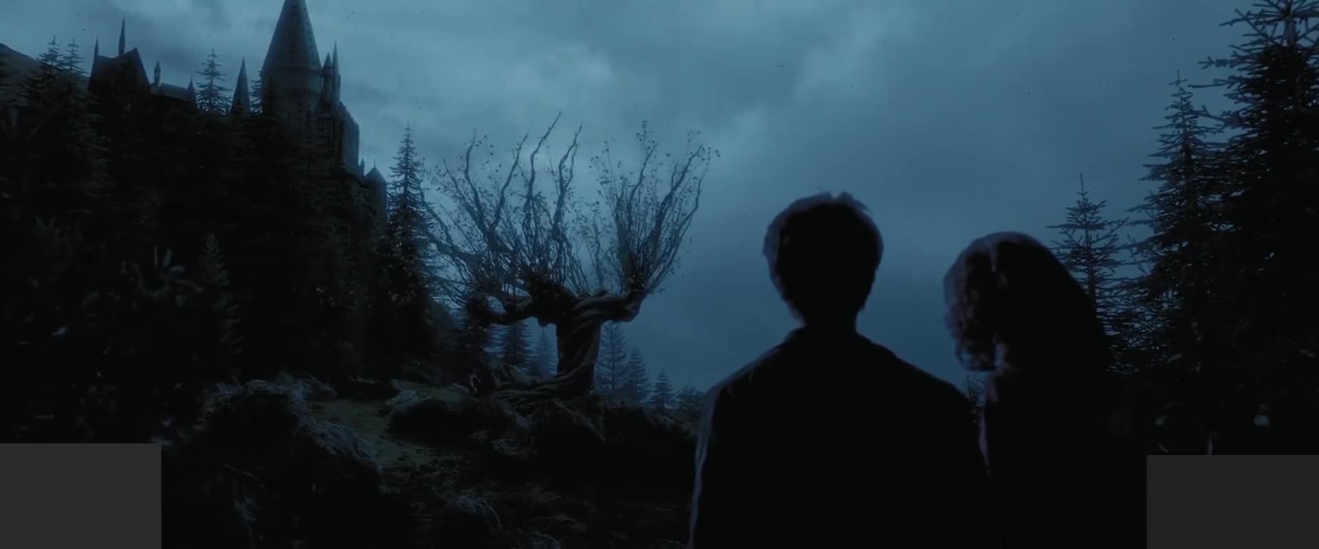 教授想在屋子里找到什么,找到了吗,哈利波特为何在外过夜