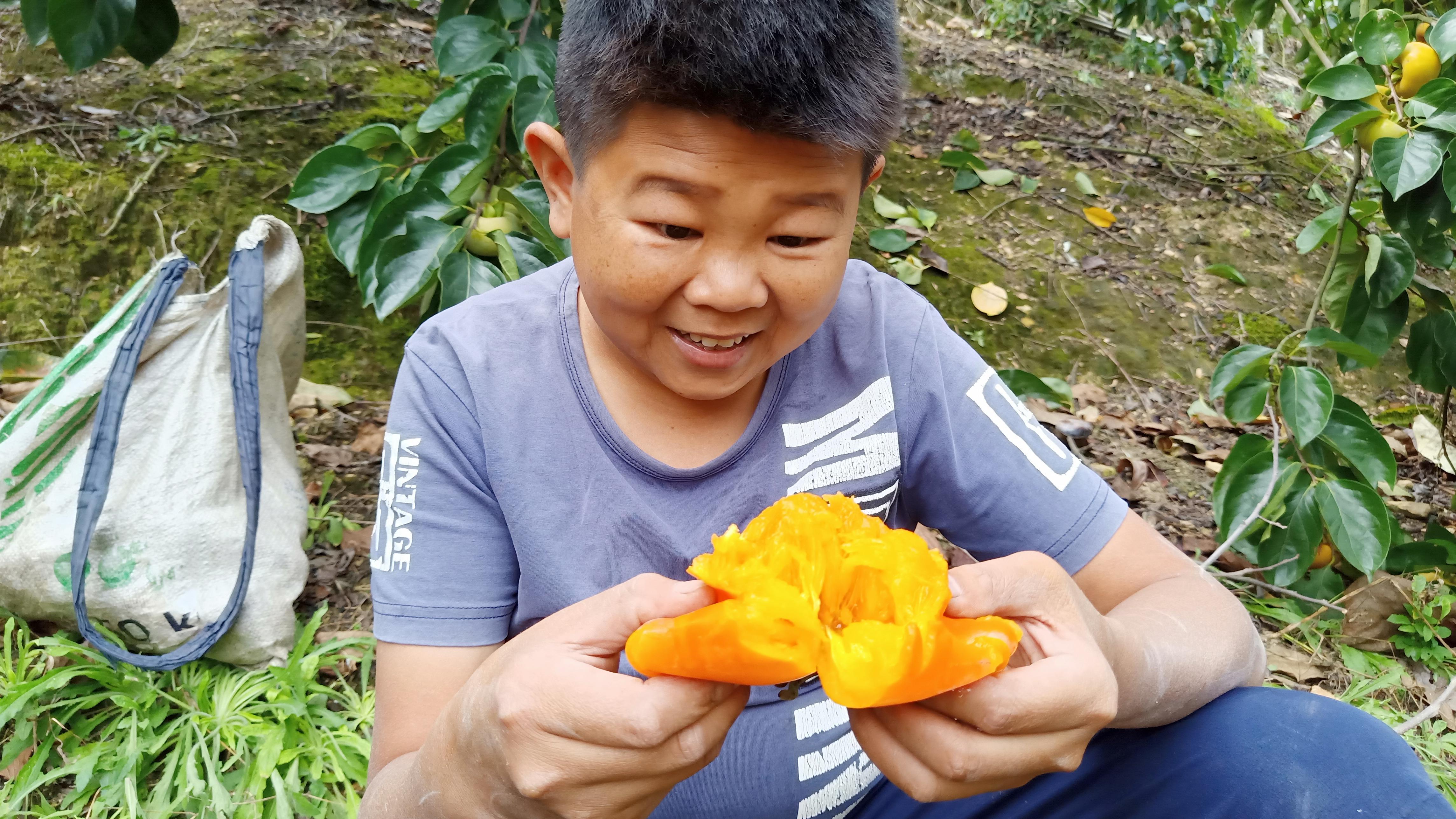 看见树上红橙橙的柿子,吃货小六又馋不住嘴了,掰开就来一口