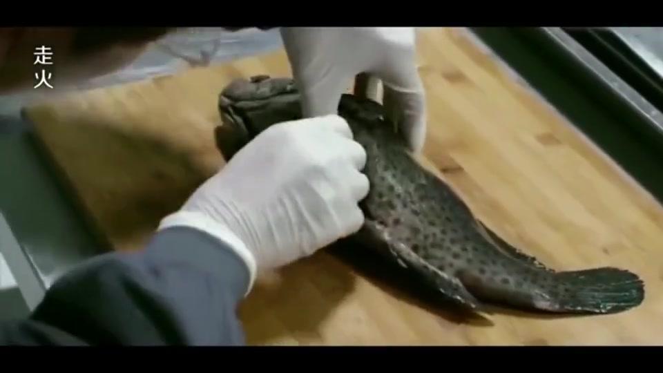 #经典看电影#毒枭藏毒的方式太令人难以想象了,竟藏在鱼肚子里