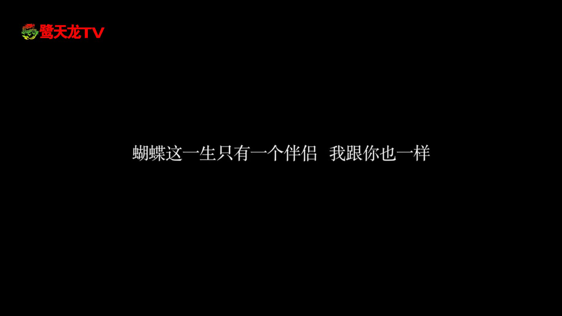 《蝴蝶公墓》主题曲蝶变MV 经典再现演绎奇情蝶恋