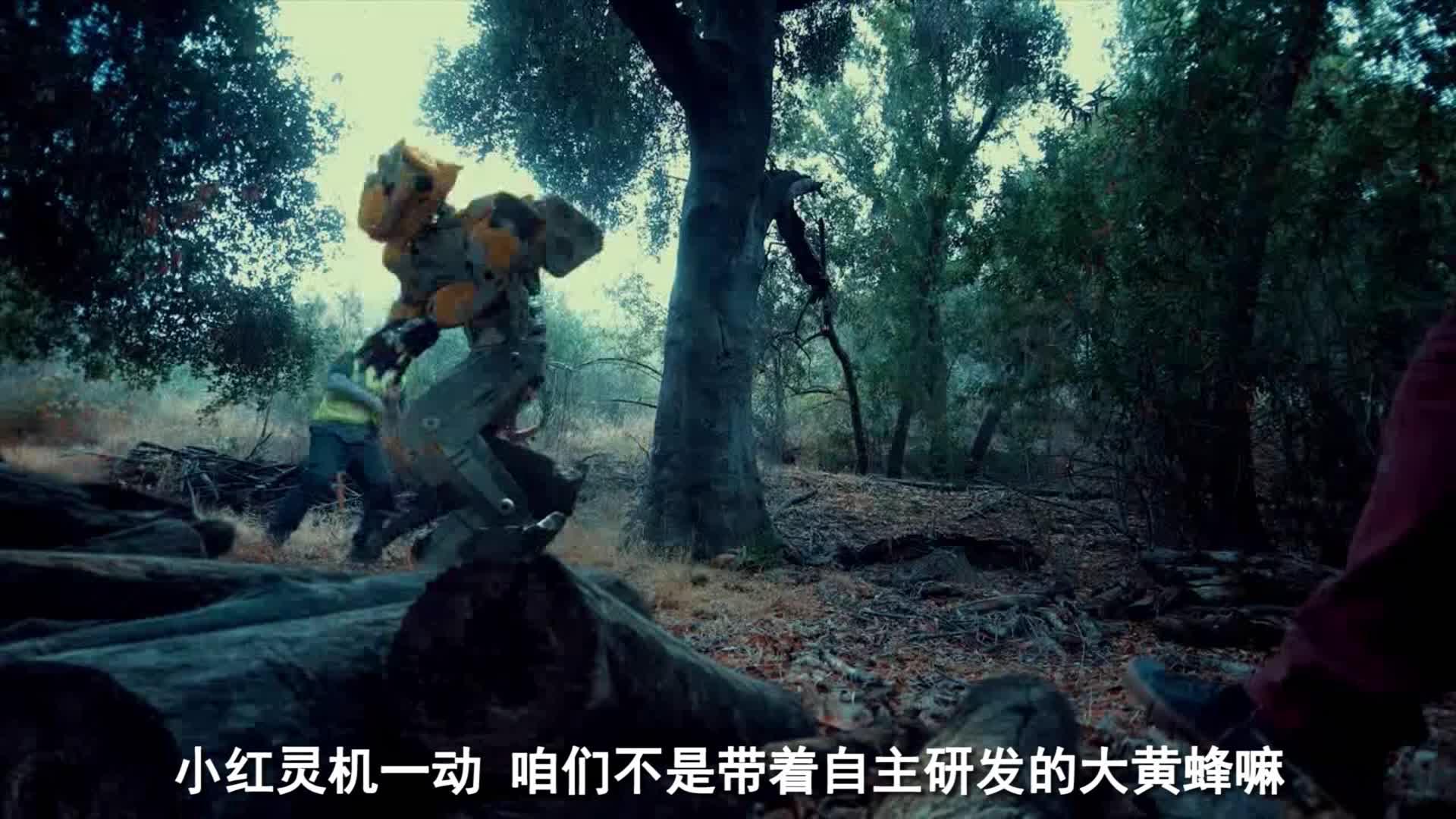 #电影迷的修养#《大黄蜂》究极进化《大马蜂》?!