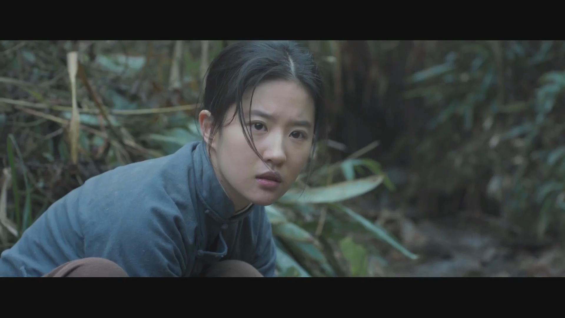 刘亦菲主演二战爱情电影《烽火芳菲》中文电影预告