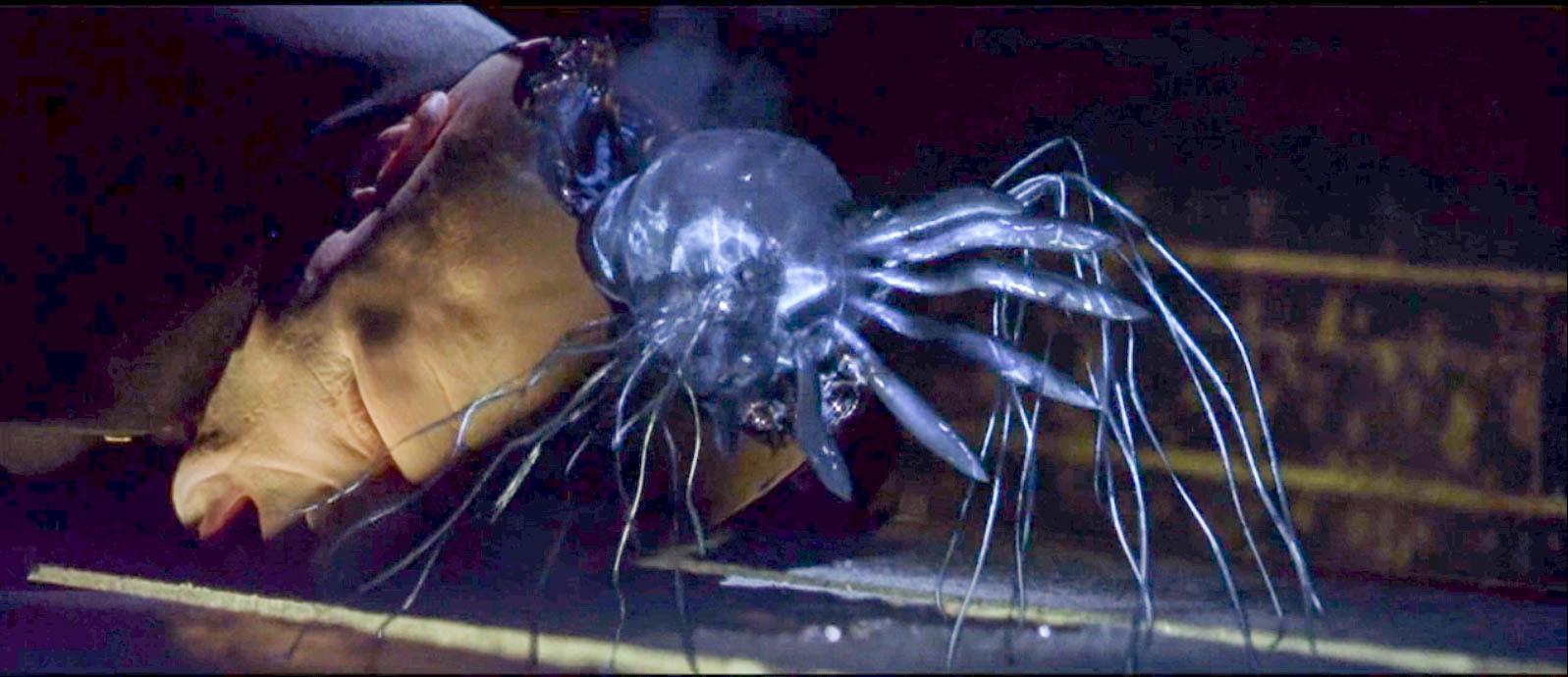 """男子打伤一个黑衣人,却从其脑袋内爬出""""怪异生物"""",把他吓到了"""