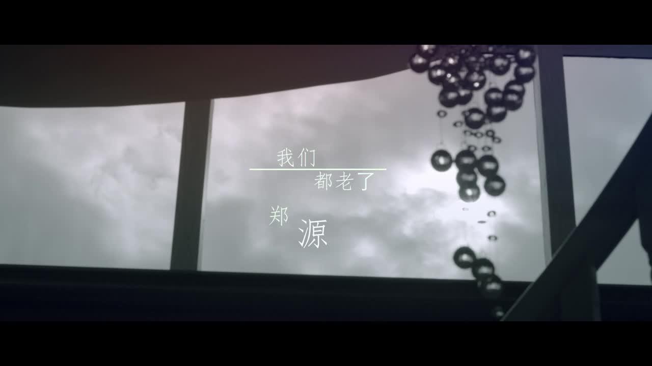 郑源 - 我们都老了