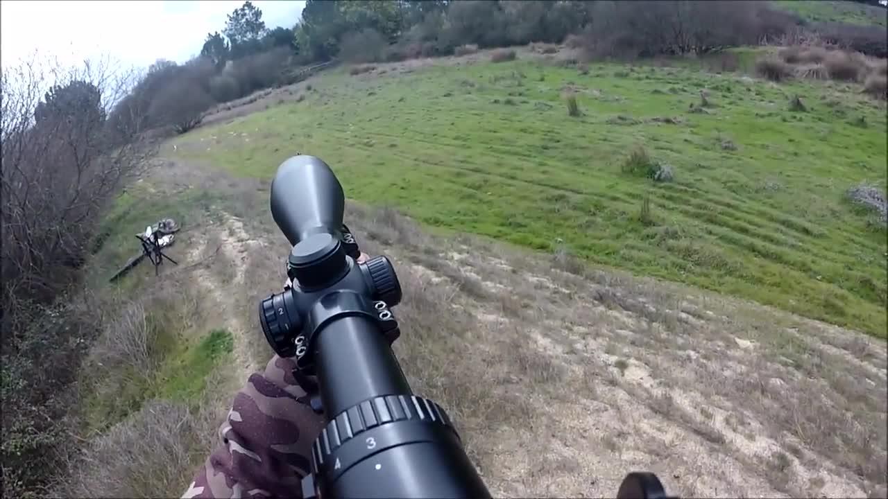 外国野猪泛滥成灾,被猎人用狙击枪击杀