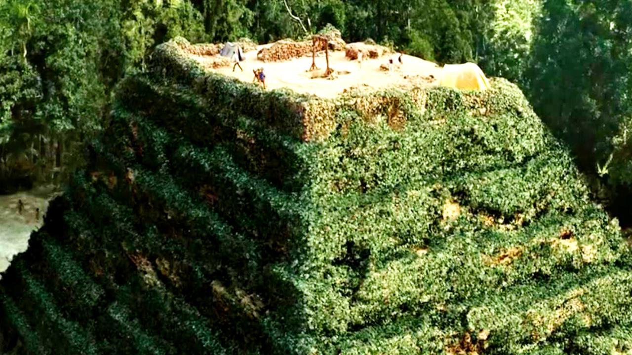 #惊悚看电影#一群年轻人来到了一座玛雅古庙,却在这里发现了一种奇怪的植物