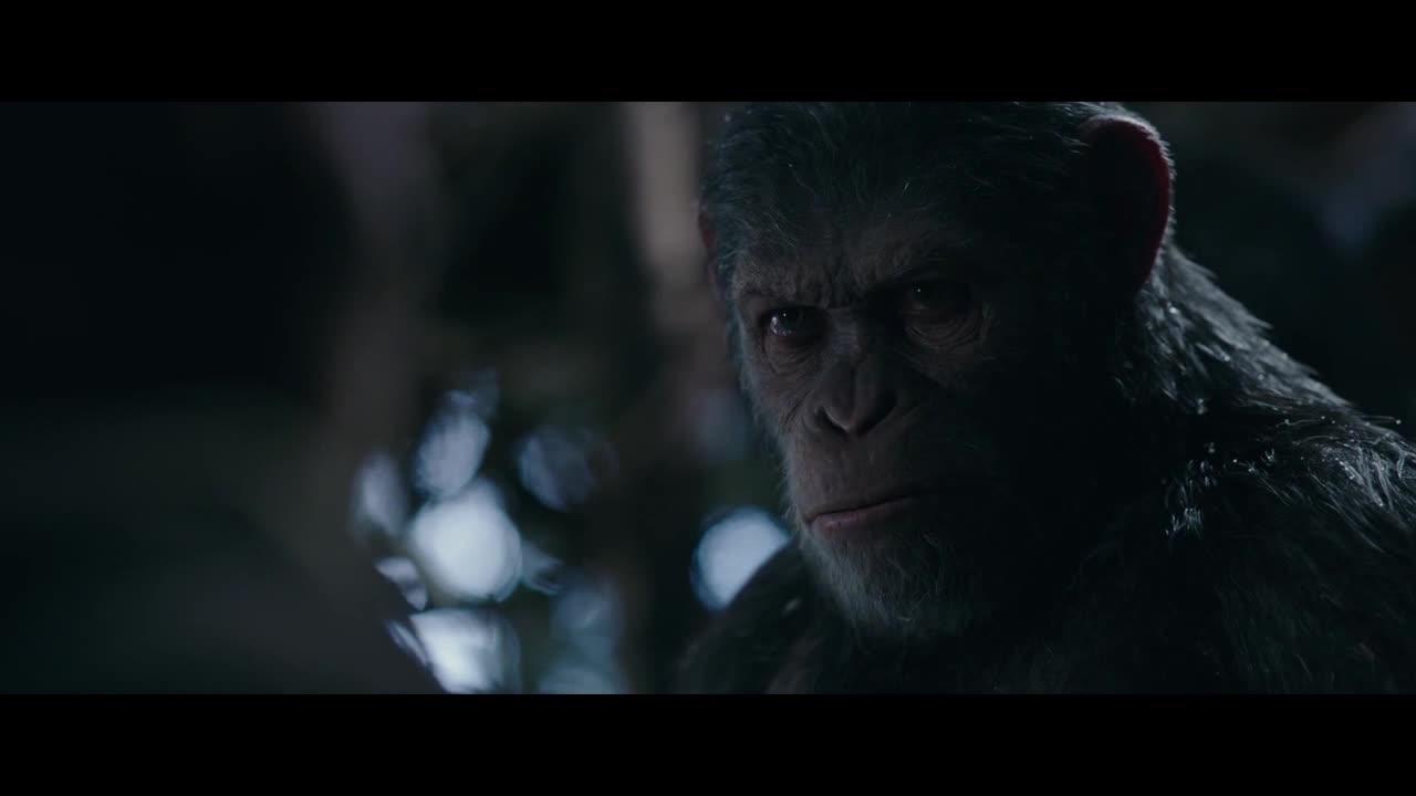 猩猩否认自己挑起战争,如今只为保护猿族而战,亲信却劝他离开