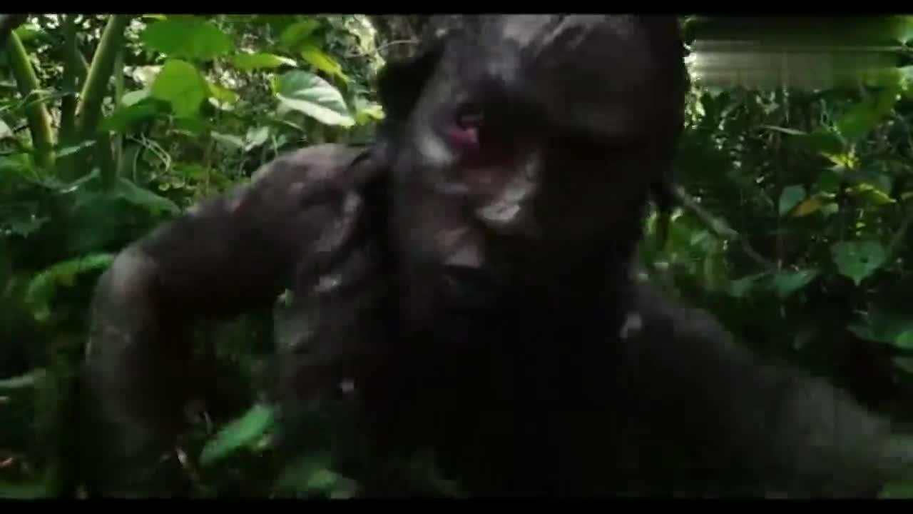#经典看电影#玛雅人丛林王者,他们的能力恐怕现代人无人能及!