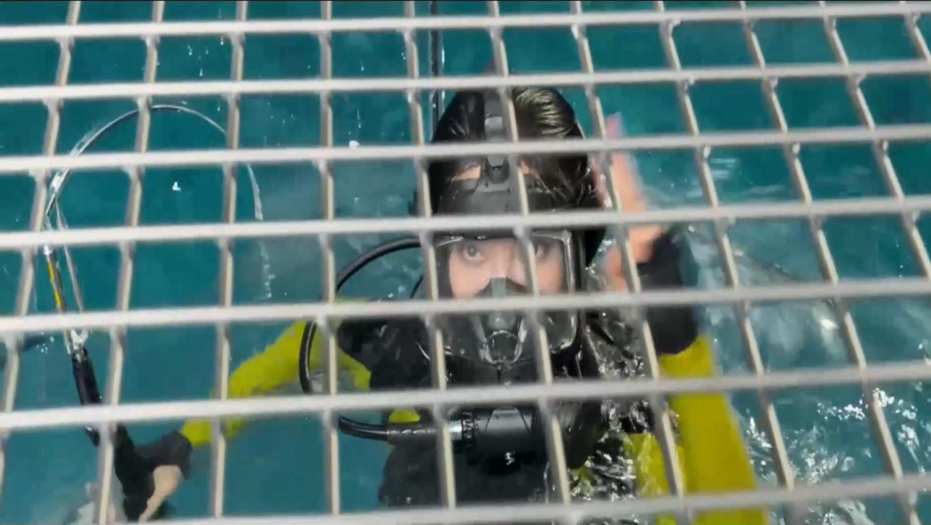 #电影最前线#李冰冰深海潜水被困,食人鲨虎视眈眈,欧美小伙英雄救美!