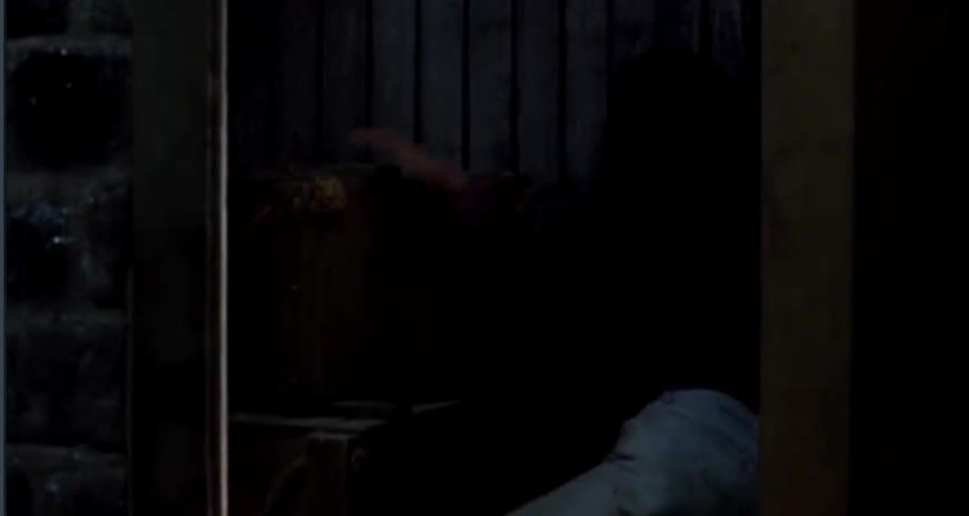 地窖惊见惨死同伴 ,神秘人疯狂抓捕