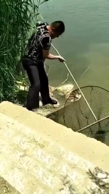 捞到了20斤的大鱼