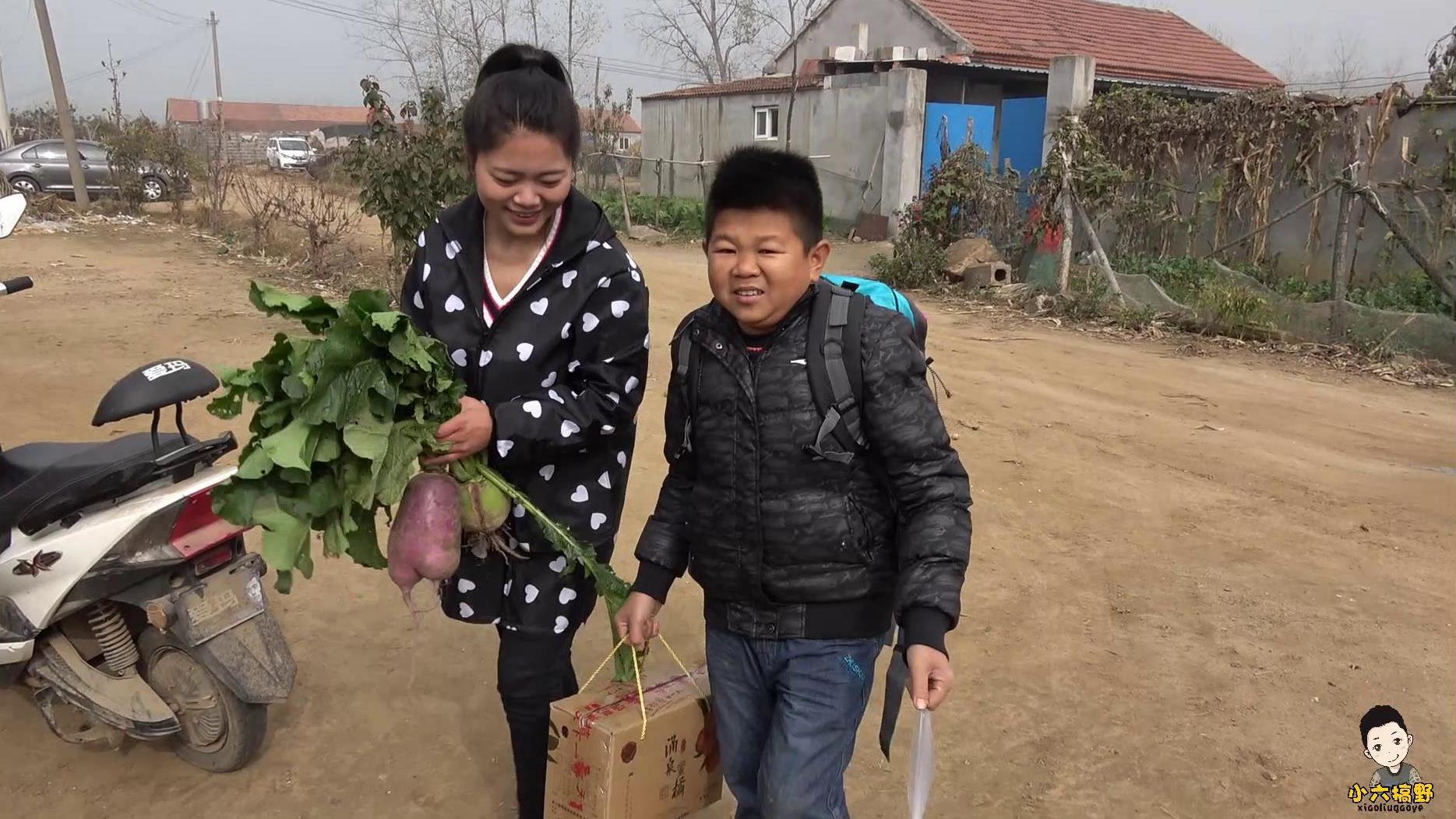 小六到江苏学习,顺道拜访下小乔,小六却先跟小乔家的猪混个熟脸