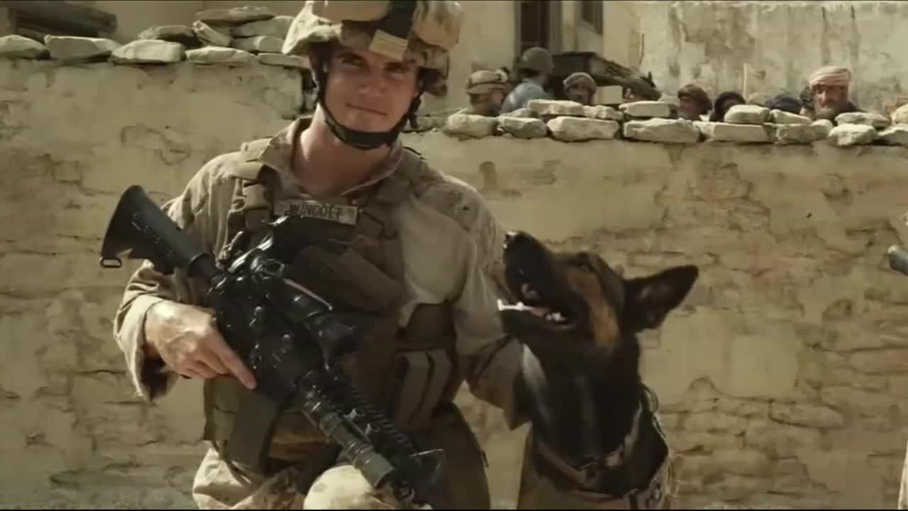 #经典看电影#主人被恶狗左右夹攻,军犬挺身而出把恶狗引开,成功把主人救了