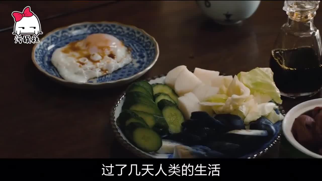 #影视#搞笑解说日本电影《生存家族》四