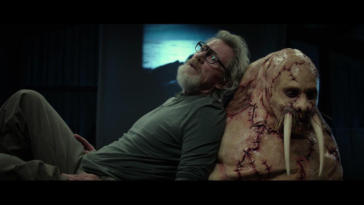 疯狂实验,男子被人改造成海象,号称呆萌版人体蜈蚣