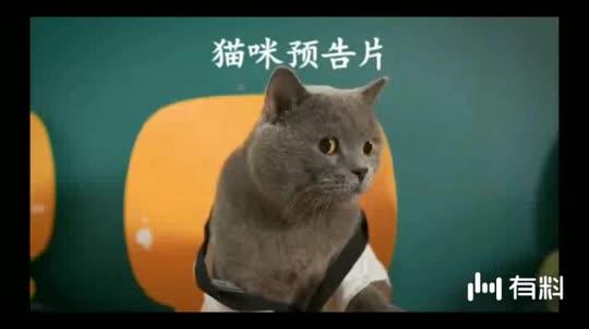 #电影片段#最终极预告!《唐人街探案3》亮底牌 刘昊然王宝强挑战最难密