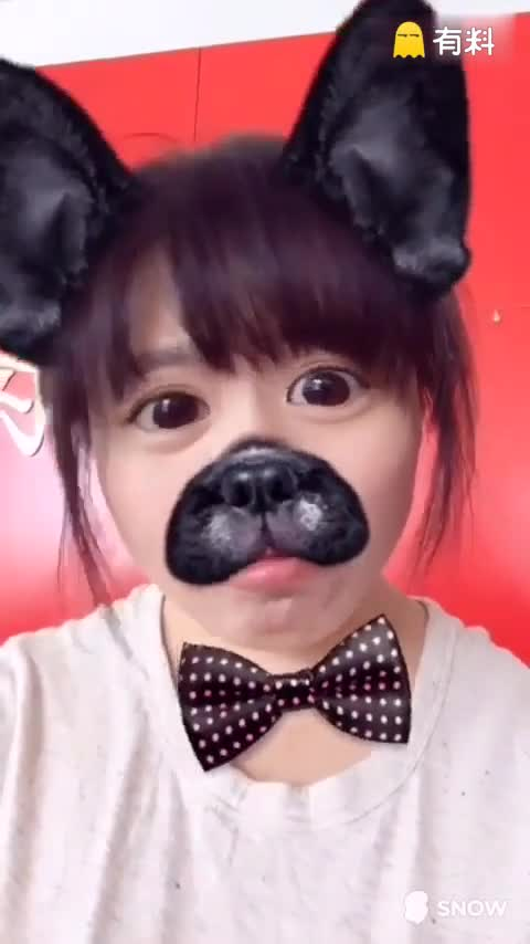 最萌神犬#宠物##随手美拍##自...