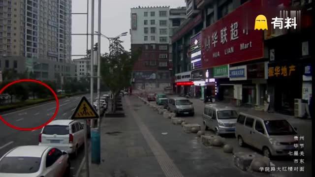 惨不忍睹!监拍落跑藏獒街头发飙 七旬老太惨遭毒口