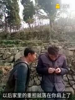 这个视频不太冷