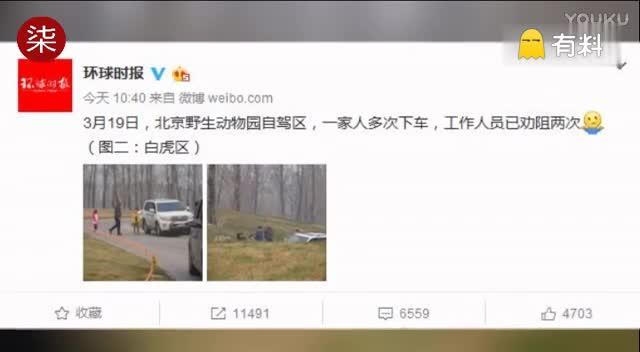 北京野生动物园自驾区 一家人多次下车_标清