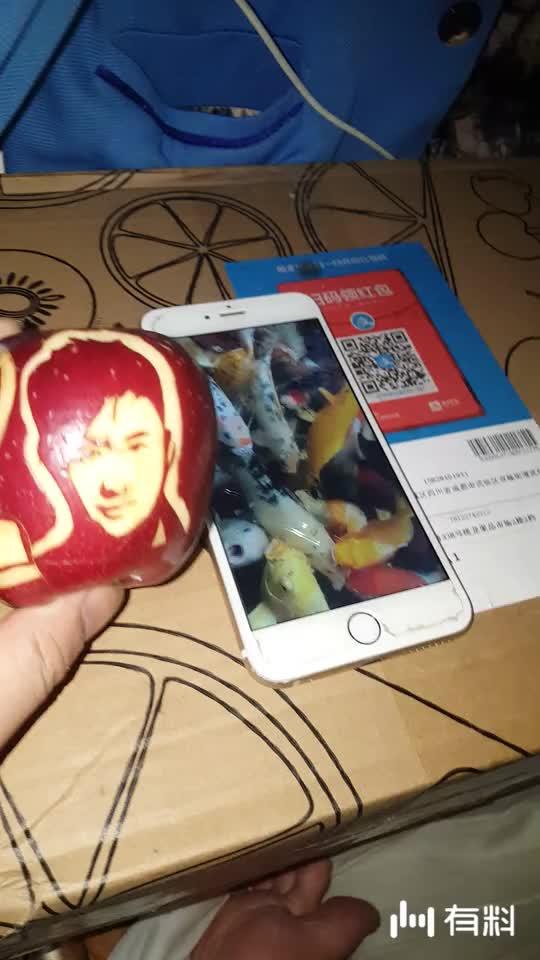 苹果雕刻~吴京