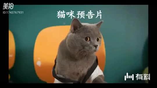 #电影片段#刘亦菲《花木兰》终极新电视预告!凌空一跃!