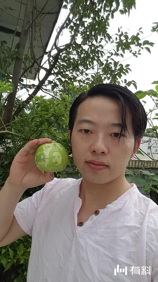 青苹果雕刻~刘亦菲
