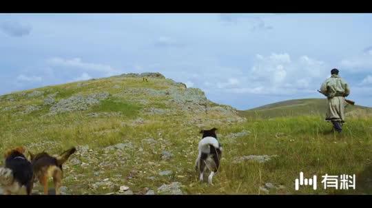 影视:狗急跳墙,狼急了会怎么样?电影《狼图腾》