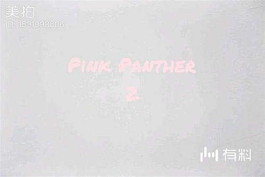 美拍视频: 粉红豹2