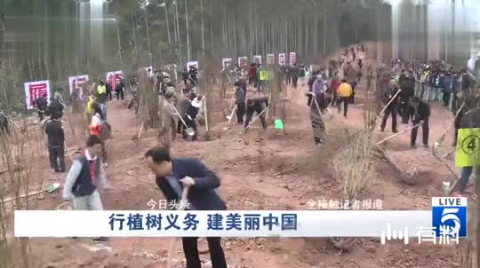 成都:行植树义务 建美丽中国