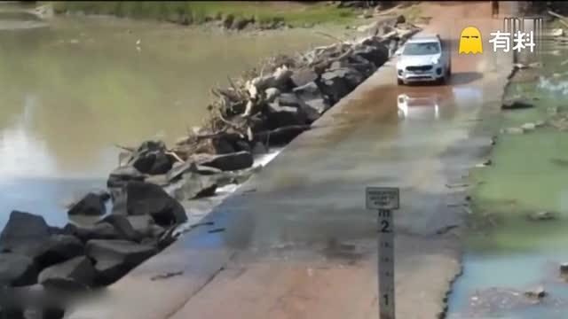 """鳄鱼不紧不慢爬上河中过道 """"阻拦""""汽车8分钟"""