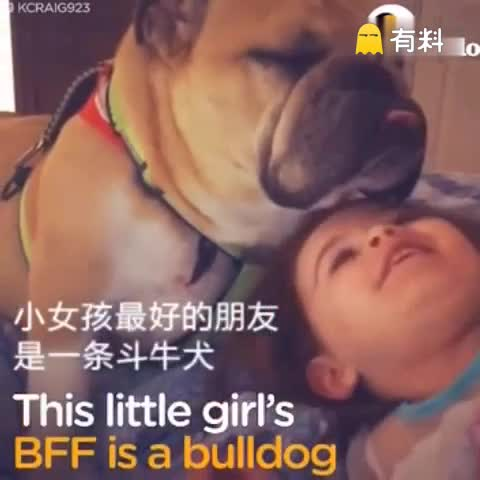 小女孩最好的朋友是一只斗牛犬…画风好暖