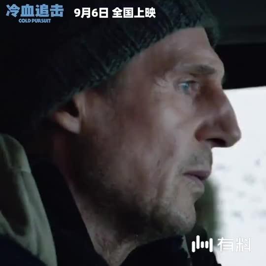 【冷血追击】连姆·尼森激情救子