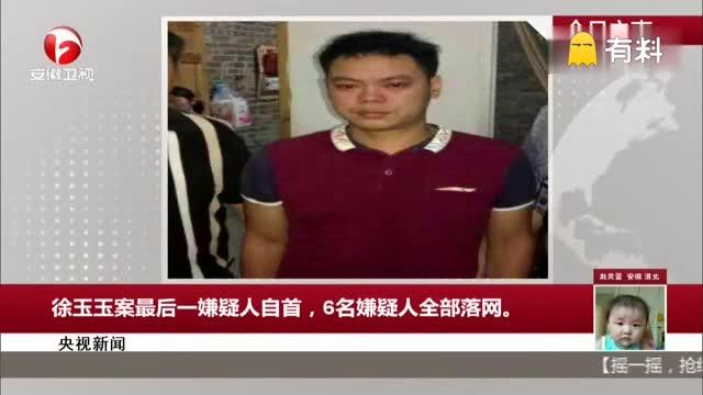 央视新闻:徐玉玉案最后一嫌疑人自首,6名嫌疑人全部落网