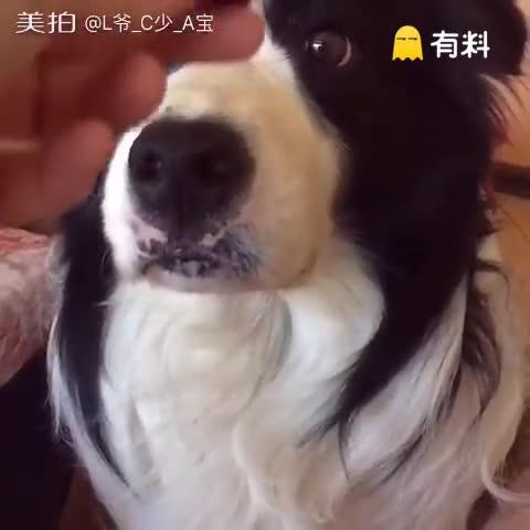 斗鸡眼怎么形成的~