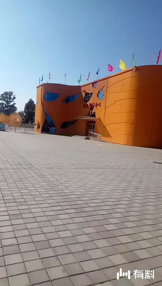 胡杨林景区