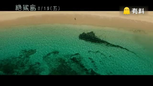 命悬一线!布蕾克·莱弗利《浅滩》正式版预告曝光!故事讲述女主角冲浪时不料被鲨鱼袭击身负重伤,祸不单行,另外两名同伴也被鲨鱼袭击,只能靠自己了 !海上与鲨鱼搏斗那场戏很精彩,Queen S挑战全新角色,惊悚片《孤儿怨》导演佐米·希尔拉执导,北美6月24日上映!