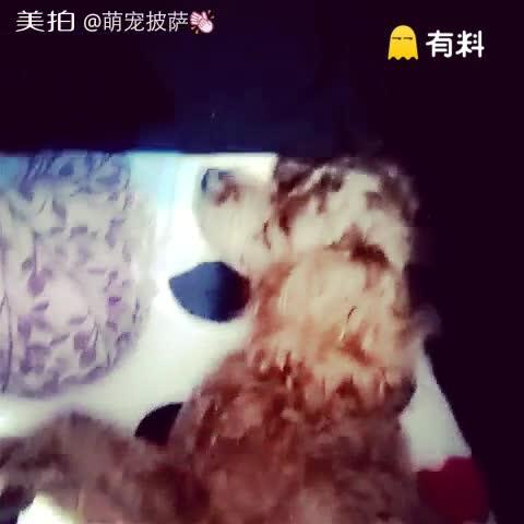 睡觉也那么舒服