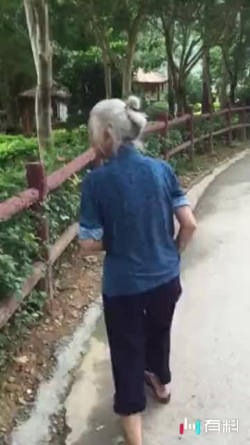 98老奶奶上树