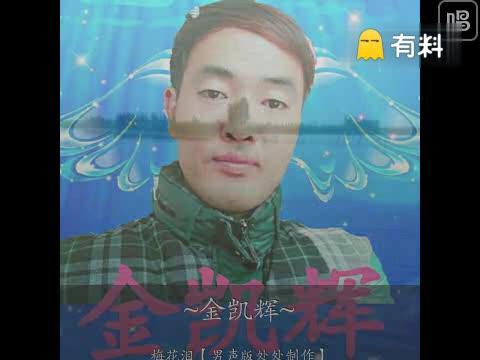 梅花泪【男声版处处制作】-金凯辉C