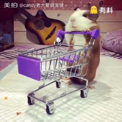 逛超市去喽。