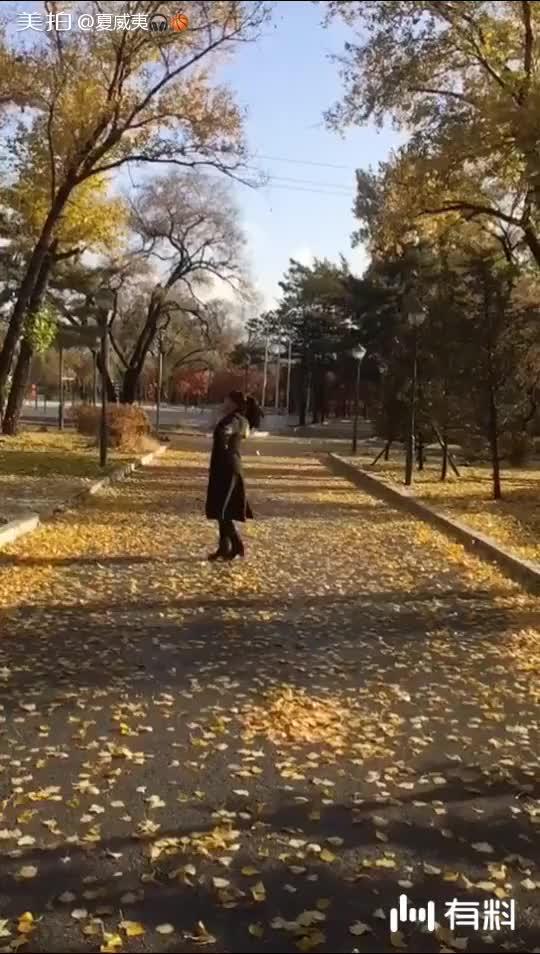 美拍视频: 秋